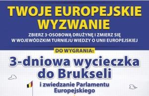 europejskie_wyzwanie_plakat_150dpi